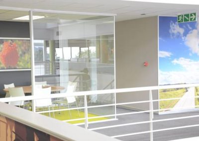 meeting room and feature wallpaper in walkway